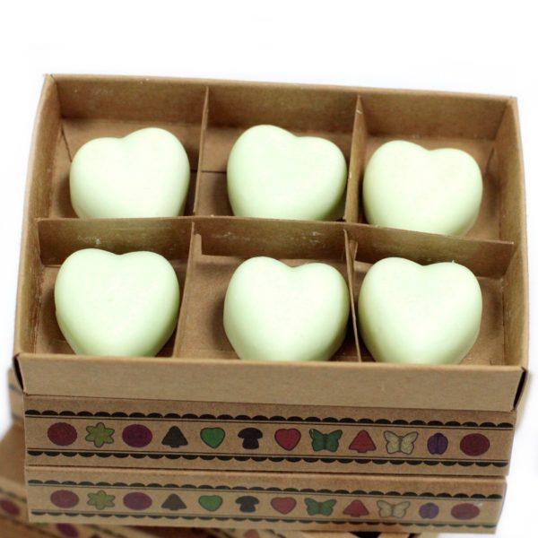 Luxury Soy Wax Melts Mint Menthol Kraft Box
